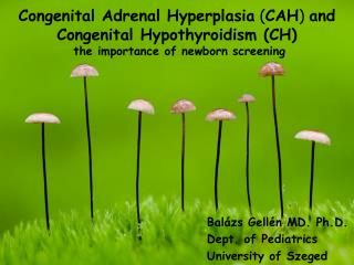 Congenital Adrenal Hyperplasia  ( CAH )  and Congenital Hypothyroidism (CH)