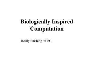 Biologically Inspired Computation