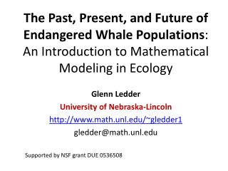 The Past, Present, and Future of Endangered Whale Populations :  An Introduction to Mathematical Modeling in Ecology