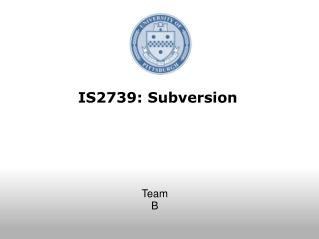 IS2739: Subversion
