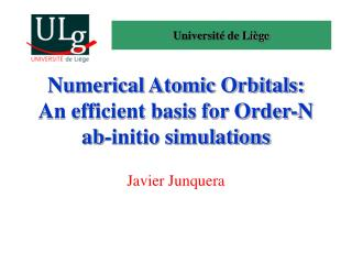Numerical Atomic Orbitals: An efficient basis for Order-N ab-initio simulations