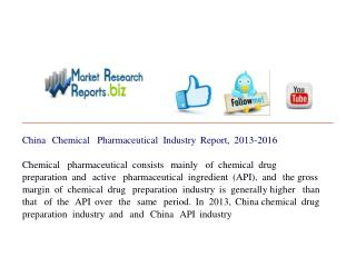 China Chemical Pharmaceutical Industry Report, 2013-2016