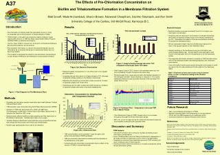 The Effects of Pre-Chlorination Concentration on