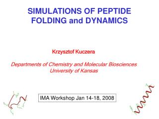SIMULATIONS OF PEPTIDE FOLDING and DYNAMICS
