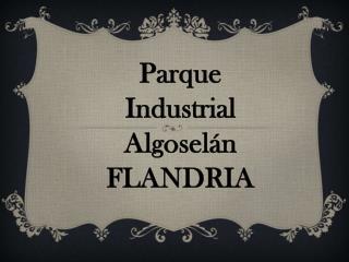 ALGOSELAN - Villa Flandria / Grupo celeste