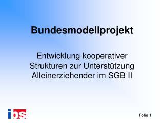 Bundesmodellprojekt