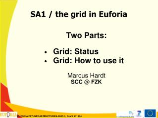 SA1 / the grid in Euforia