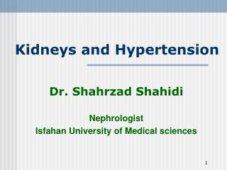 Kidneys and Hypertension