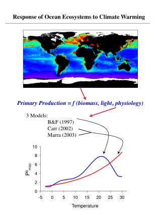 Response of Ocean Ecosystems to Climate Warming