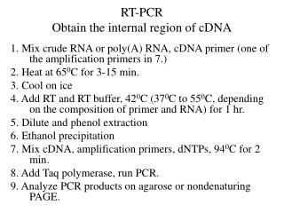 RT-PCR Obtain the internal region of cDNA
