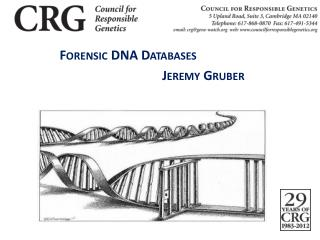 Forensic DNA Databases 					   Jeremy Gruber