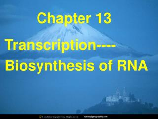 Transcription----Biosynthesis of RNA