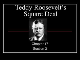 Teddy Roosevelt s  Square Deal