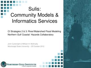 Sulis: Community Models & Informatics Services