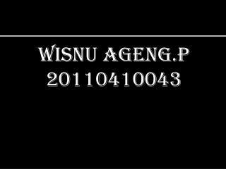 Wisnu Ageng.P 20110410043