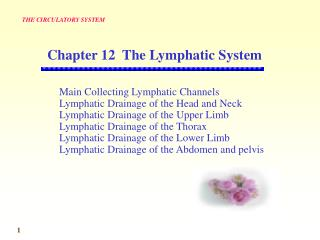 Main Collecting Lymphatic Channels Lymphatic Drainage of the Head and Neck