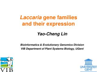 Laccaria  gene families  and their expression