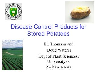 Disease Control Products for Stored Potatoes