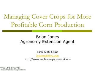 Managing Cover Crops for More Profitable Corn Production