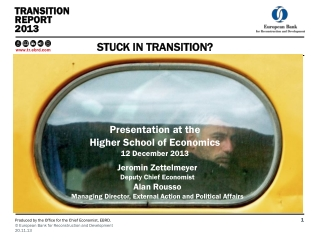 Transition report 2013