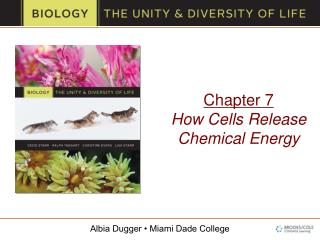 Chapter 7 How Cells Release Chemical Energy