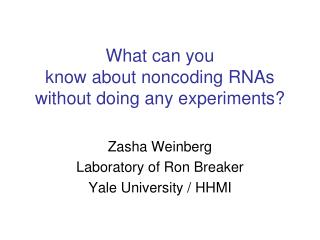 What can you  know about noncoding RNAs without doing any experiments?