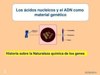 Los ácidos nucleicos y el ADN como  material genético