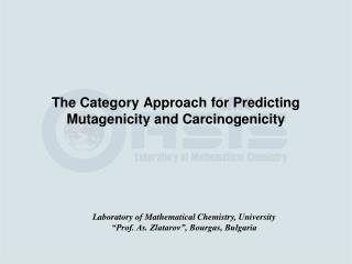 The Category Approach for Predicting Mutagenicity and Carcinogenicity