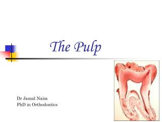 The Pulp