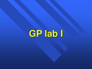 GP lab I