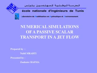 NUMERICAL SIMULATIONS OF A PASSIVE SCALAR TRANSPORT IN A JET FLOW