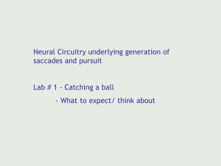 Neural Circuitry underlying generation of saccades and pursuit Lab # 1 - Catching a ball