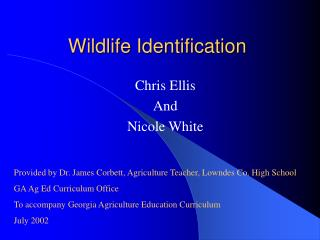 Wildlife Identification