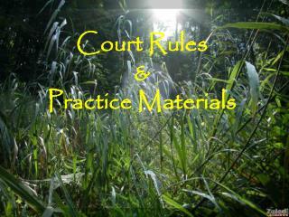 Court Rules  & Practice Materials