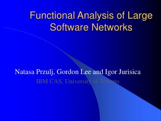 Functional Analysis of Large Software Networks