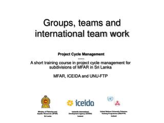 Groups, teams and international team work