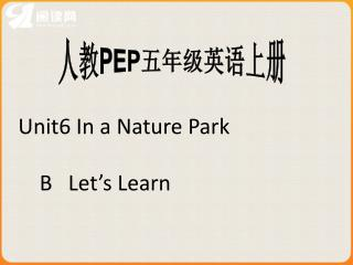 Unit6 In a Nature Park      B   Let's Learn