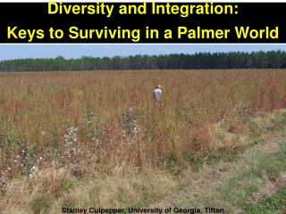 Diversity and Integration:   Keys to Surviving in a Palmer World