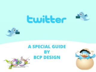 Special guideline twitter for Business suggest by BCP Design