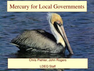 Mercury for Local Governments