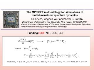 The MP/SOFT methodology for simulations of multidimensional quantum dynamics