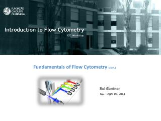 Fundamentals  of Flow Cytometry ( cont .)