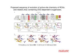 R Chowdhury  et al. Nature  000 , 1-5 (2014) doi:10.1038/nature13263