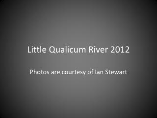 Little Qualicum River 2012