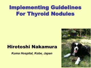 Implementing Guidelines For Thyroid Nodules