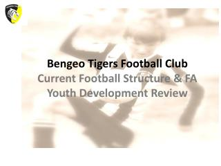 Bengeo Tigers Football Club Current Football Structure & FA Youth Development Review