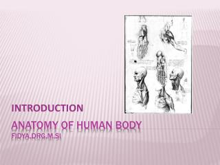 aNaTOMY OF HUMAN BODY fidya,drg,M.Si