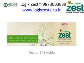 Logix Zest