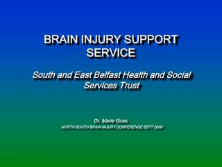 BRAIN INJURY SUPPORT SERVICE South and East Belfast Health and Social Services Trust