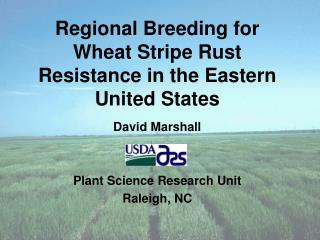Regional Breeding for Wheat Stripe Rust Resistance in the Eastern United States